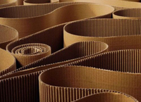 The trend of Corrugated cardboard industry analysis by 2022